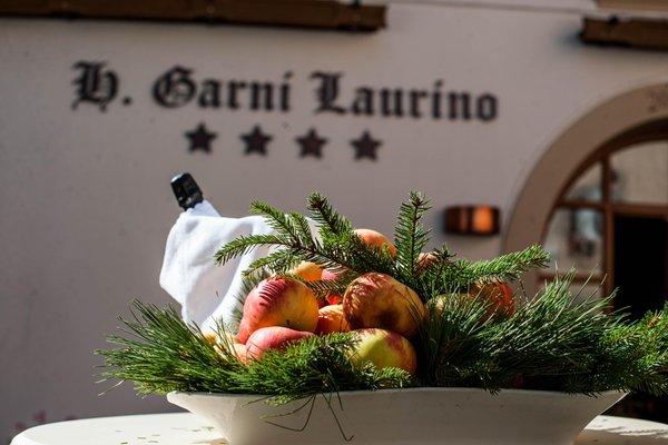Foto di alcuni dettagli Laurino