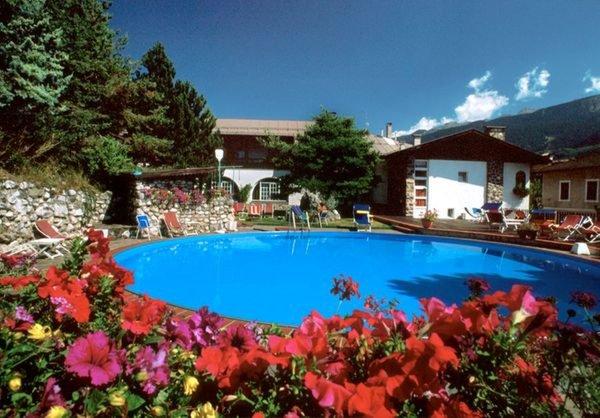 Photo of the garden Panchià