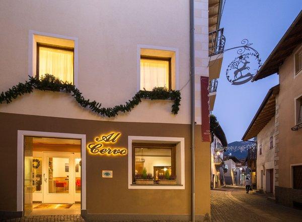 Foto estiva di presentazione Al Cervo - Dolomites Experience - Hotel 3 stelle