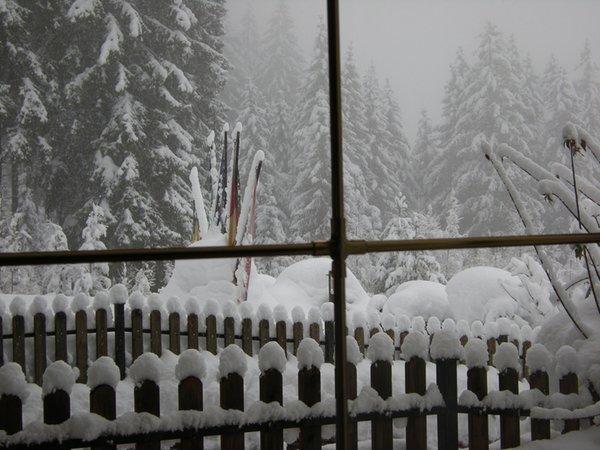 Panoramic view Tesero