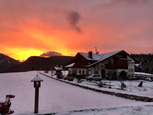 Foto esterno in inverno Maso Pertica