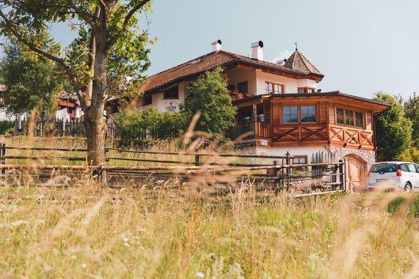 Photo exteriors in summer Maso Corradini