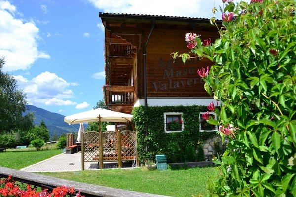 Foto esterno in estate Maso Val Averta