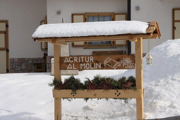 Foto esterno in inverno Al Molin