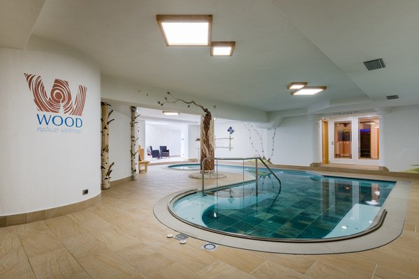 Swimming pool Residence Mich - Family & Wellness