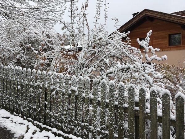 Foto esterno in inverno Profumi nel Bosco