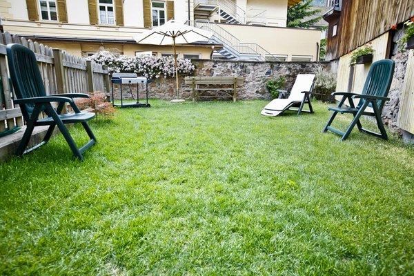 Photo of the garden Predazzo