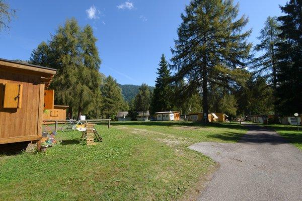 Foto vom Garten Bellamonte
