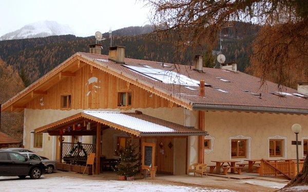 Foto Außenansicht im Winter Fiemme Village Camping&Resort