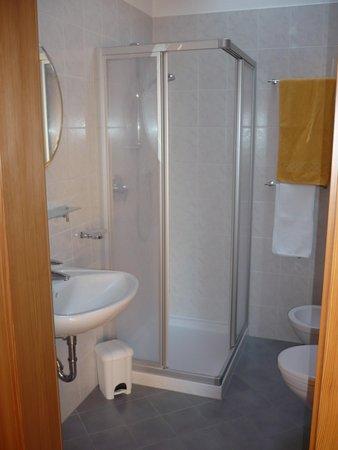 Foto del bagno Appartamenti in agriturismo Jagerhof