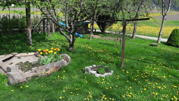 Photo of the garden Campo di Trens / Freienfeld (Vipiteno / Sterzing and surroundings)