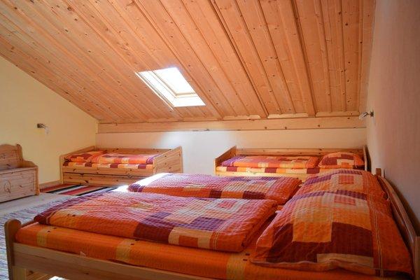 Foto della camera Appartamenti in agriturismo Martlerhof