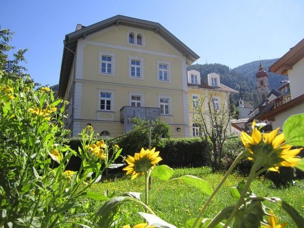 Summer presentation photo Apartments Zum Theater