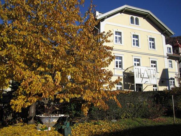 Photo exteriors in summer Apartments Zum Theater