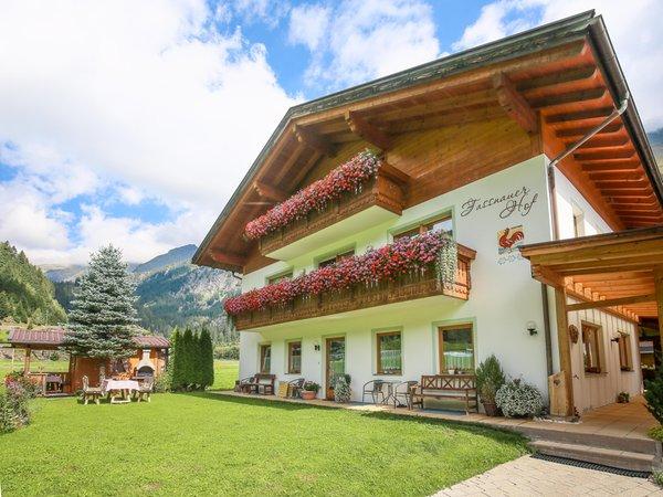 Foto estiva di presentazione Fassnauerhof - Appartamenti in agriturismo 3 fiori