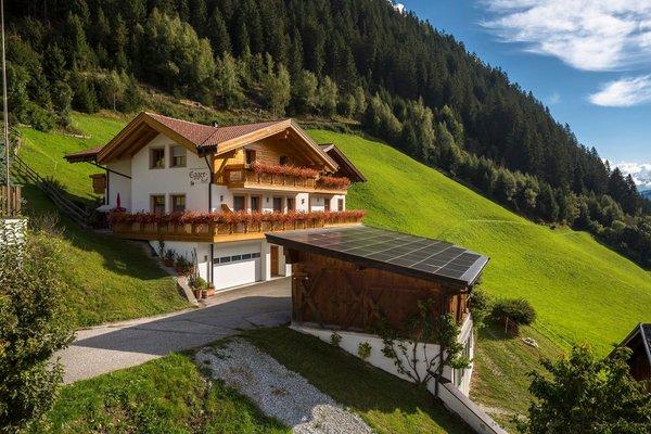 Sommer Präsentationsbild Ferienwohnungen auf dem Bauernhof Eggerhof