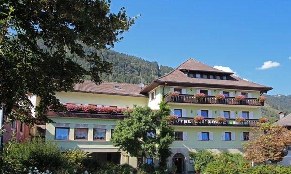 Foto estiva di presentazione Zur Linde - Gasthof (Albergo) 2 stelle