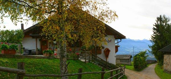 Photo exteriors in summer Anratterhof