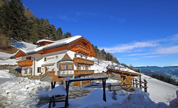 Foto invernale di presentazione Appartamenti in agriturismo Felderhof