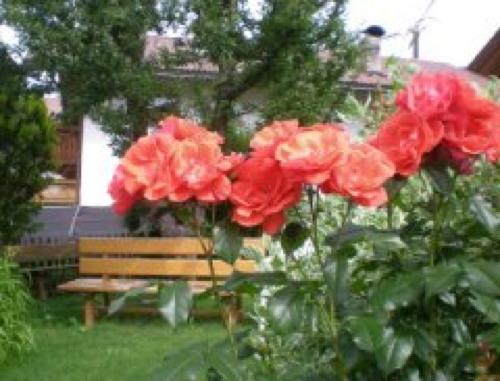 Foto del giardino Rodengo