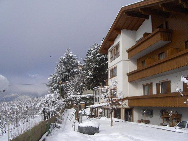 Foto invernale di presentazione Weinberg - Appartamenti