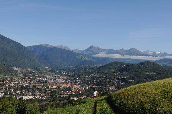 Photo gallery Bressanone / Brixen summer