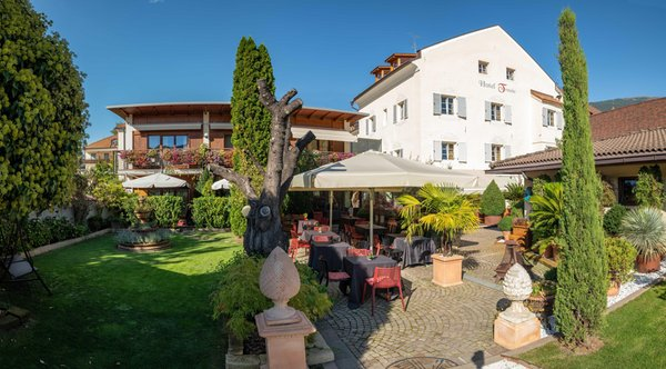 Photo exteriors in summer Hotel Traube