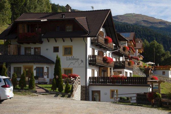 Foto estiva di presentazione Waldheim Alpine Appartements - Residence 4 stelle