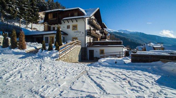 Foto invernale di presentazione Waldheim Alpine Appartements - Residence 4 stelle