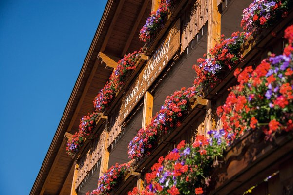 Photo exteriors in summer Alpenhof