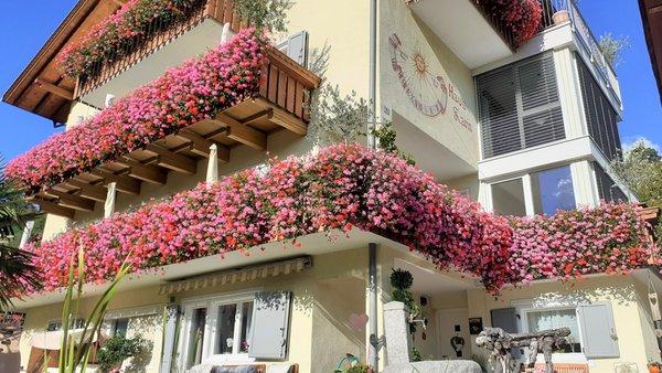 Foto esterno in estate Haus Karin