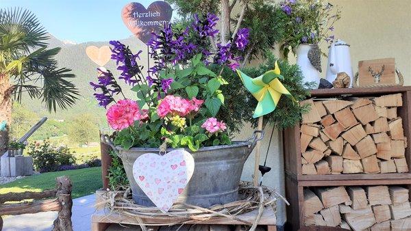 Foto del giardino Varna - Novacella
