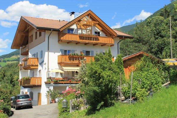 Foto estiva di presentazione Appartement Bergheim