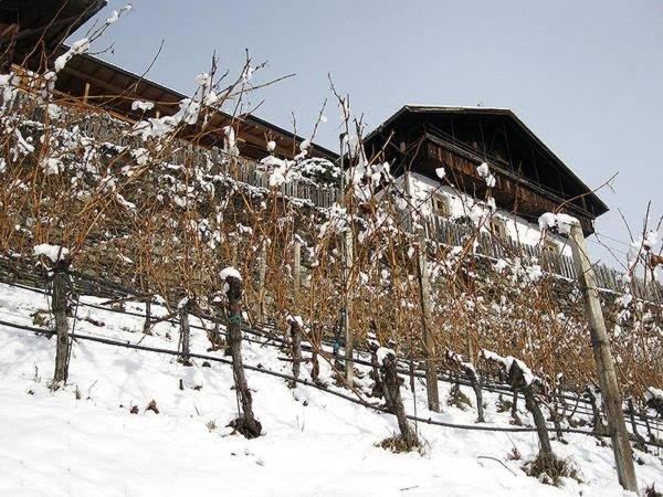 Winter Präsentationsbild Ferienwohnungen auf dem Bauernhof Hofer Hof