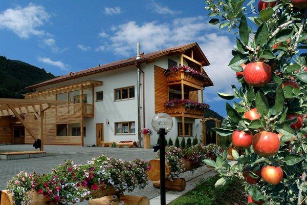 Foto estiva di presentazione Appartamenti in agriturismo Obermoarhof