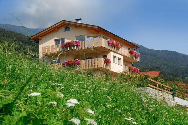 Photo exteriors in summer Wiesenrain