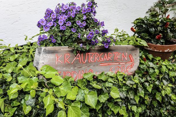 Photo of the garden Velturno / Feldthurns