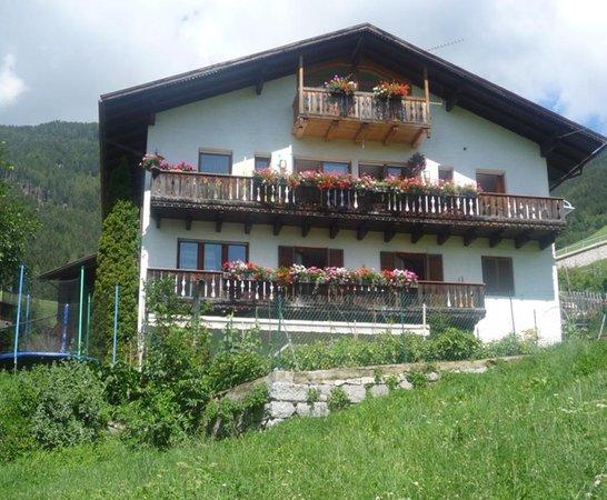 Foto Außenansicht im Sommer Mittermüllerhof