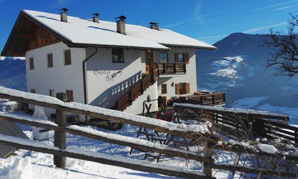 Foto invernale di presentazione Gnoler Hof - Appartamenti in agriturismo 3 fiori