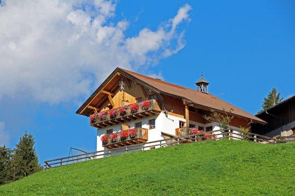 Photo exteriors in summer Unterschnothof