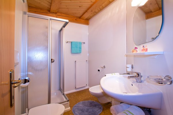 Photo of the bathroom Farmhouse apartments Unterschnothof