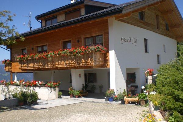 Summer presentation photo Farmhouse apartments Gasleidhof