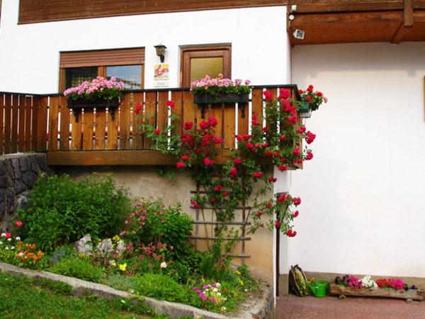 Foto esterno Appartamenti in agriturismo Heinzlerhof