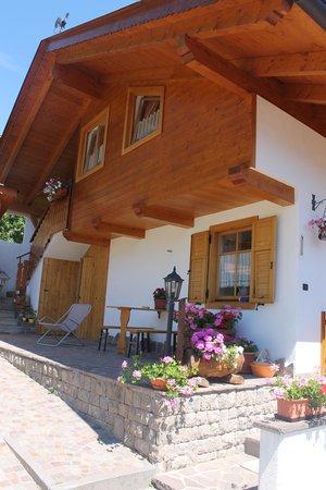 Foto esterno in estate Boschetto Franco