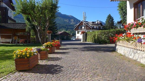 Foto Außenansicht Hotel Bellaria