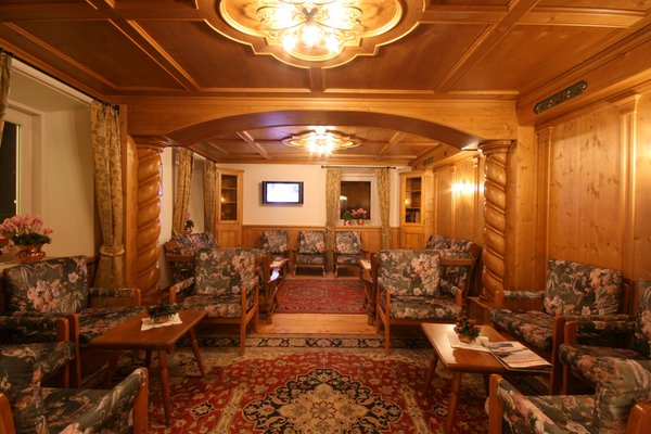 Le parti comuni Hotel Des Alpes