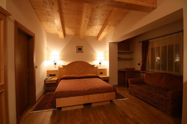 Foto della camera Hotel Des Alpes