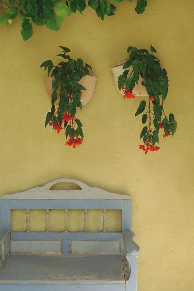 Foto del giardino San Candido