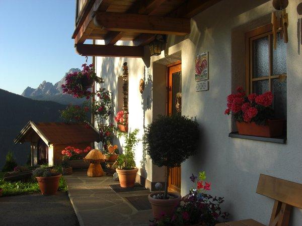 Foto Außenansicht im Sommer Egarterhof