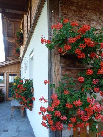 Foto di alcuni dettagli Galler am Berg